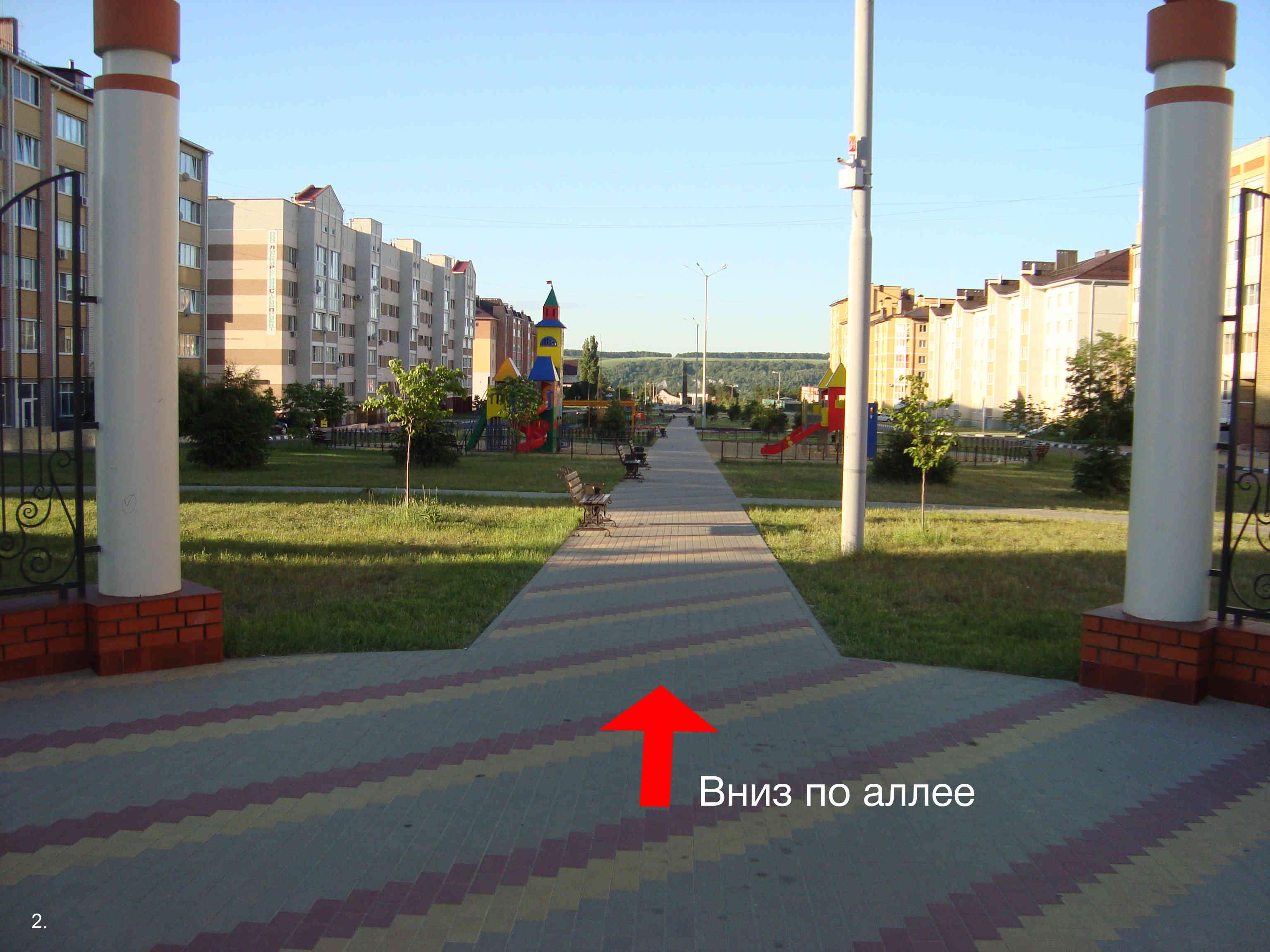 рис1 (2)